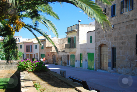 Mallorca stock photo, Street with palm tree on mallorca by Wolfgang Zintl