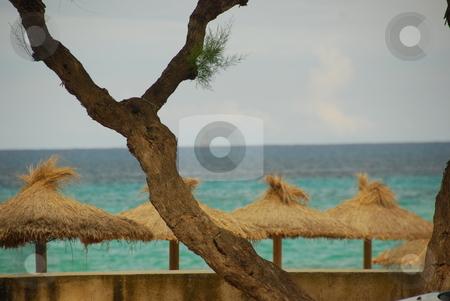 Mallorca stock photo, Beach on the island mallorca by Wolfgang Zintl
