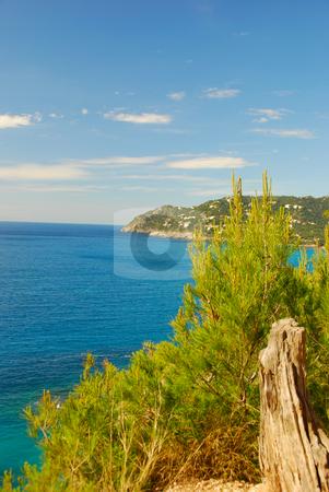 Mallorca stock photo, Coast line on the island mallorca by Wolfgang Zintl