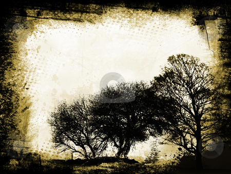 Grunge trees stock photo, Silhouettes of trees on grunge background by Kirsty Pargeter
