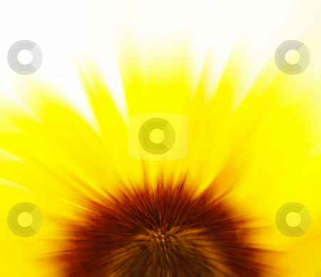 Sunflower blur stock photo, Abstract blur background of a sunflower by Kirsty Pargeter