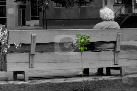 Our life stock photo, Old woman siting on the bench by Sergej Razvodovskij