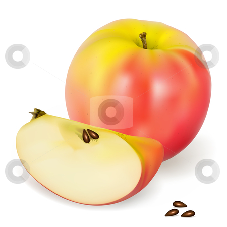 Apple Pink Lady stock vector clipart, A realistic Pink Lady apple, vector illustration by Laurent Renault