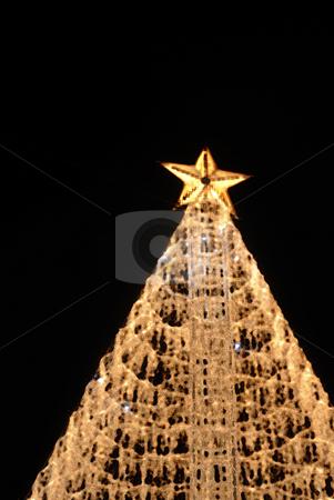 Christmas tree stock photo, Christmas tree lights in the dark night by Rui Vale de Sousa