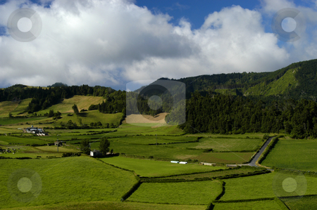 Green stock photo, Green fields by Rui Vale de Sousa