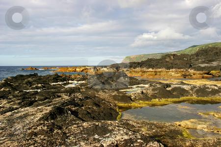 Coastal stock photo, Coastal rock view, azores island by Rui Vale de Sousa