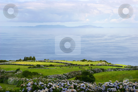 Farm stock photo, Azores farm on the coast by Rui Vale de Sousa