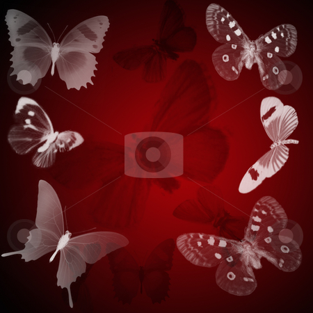 Butterfly background stock photo, A red background designed from butterflies by Matt Baker
