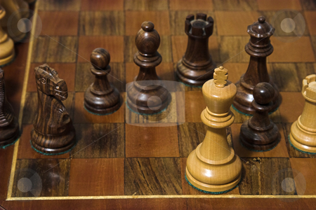 Check Mate stock photo, The king is checked mated in a game of chess by Matt Baker
