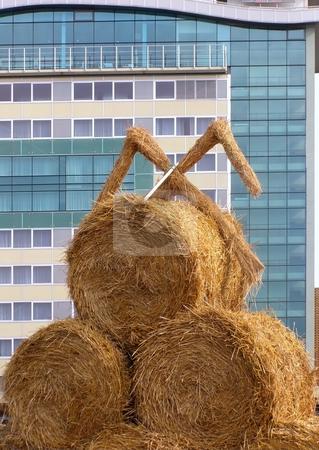 Urbanization stock photo, Bundle of hay against the modern building background by Sergej Razvodovskij