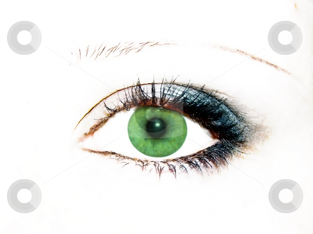 Green eye stock photo, Green women eye with evening blue make-up by Sergej Razvodovskij