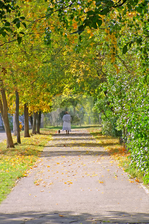 Autumn alley stock photo, Old woman faraway on the autumn alley by Sergej Razvodovskij
