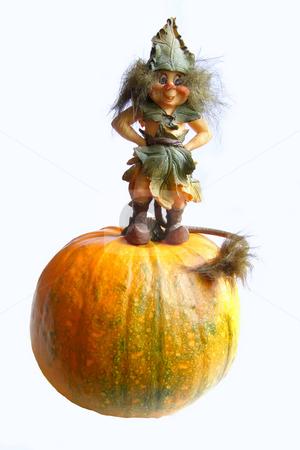 Hallowe'en gnome stock photo, The figurine of gnome standing on a pumpkin by Sergej Razvodovskij