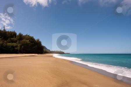 Lumaha'i beach in Kauai stock photo, Broad sandy beach of Lumaha'i on Kauai by Steven Heap