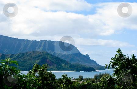 Na Pali coastline framed by trees stock photo, Na Pali coastline off the north coast of Hawaii framed by verdant trees by Steven Heap
