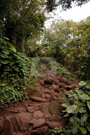 Kalalau trail in Kauai stock photo, View up the rocky Kalalau trail on the north coast of Kauai by Steven Heap