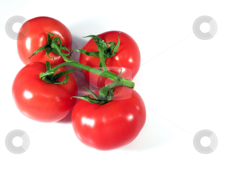 Ripe tomatoes stock photo, Ripe organic shiny red tomatoes on a bright background. by Sinisa Botas