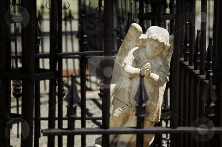 Angel behind wrought iron bars stock photo, Amgel in a cemetary behind wrought iron bars by Scott Griessel