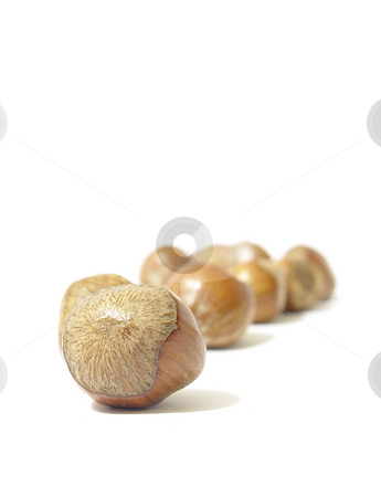 Chesnuts on White stock photo,  by Kirsty Pargeter