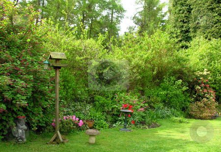 English Garden stock photo,  by Kirsty Pargeter