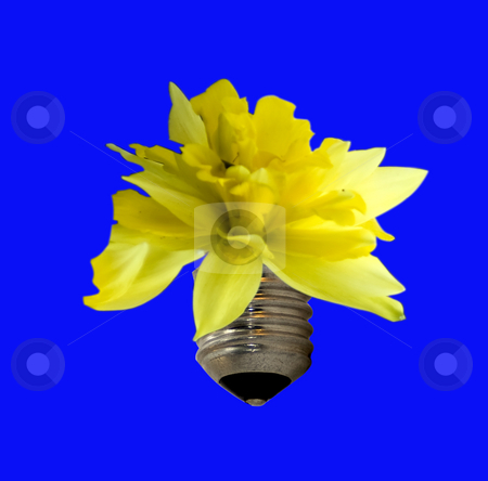 Bulb flower stock photo, Yellow flower springing from metal piece of a bulb by Fabio Alcini
