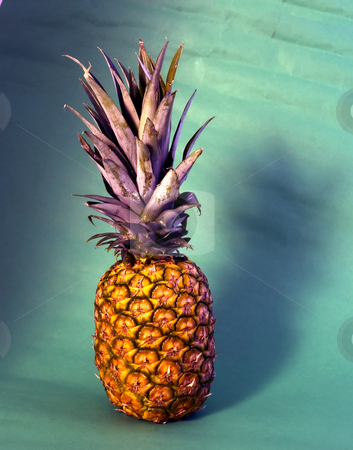Ananas stock photo, An isolated ananas on green background by Fabio Alcini