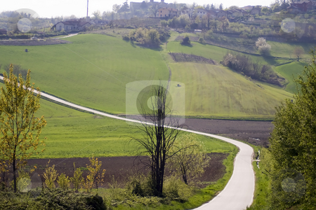 Countryside stock photo, Landscape of green countryside by Fabio Alcini