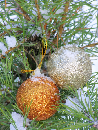 Christmas balls stock photo, Two decoration balls on the christmas tree outdoor by Sergej Razvodovskij