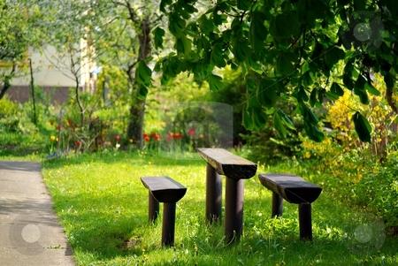 In sunny garden stock photo, Wooden table and seat in a city garden by Juraj Kovacik
