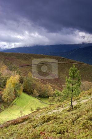 Autumn stock photo, Autumn landscape by Rui Vale de Sousa