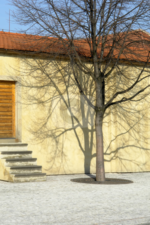House stock photo, Tree house in the old town of prague by Rui Vale de Sousa
