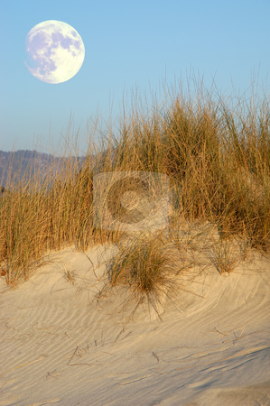 Dune stock photo, Sand dune in the afternoon light with big moon by Rui Vale de Sousa