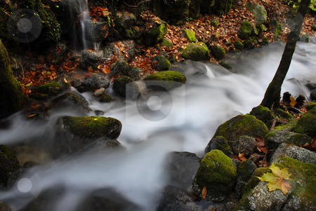 River stock photo, Long exposure in a small river in autumn by Rui Vale de Sousa