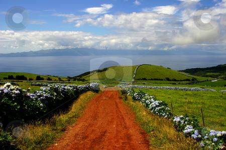 Path stock photo, Azores islands by Rui Vale de Sousa