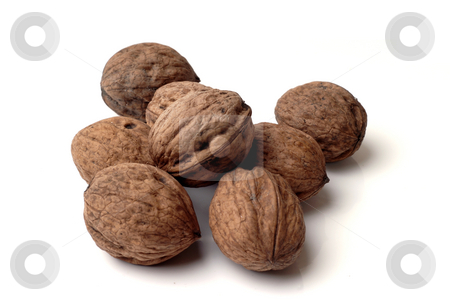 Nuts stock photo, A few Walnuts isolated on a white background. by Rui Vale de Sousa