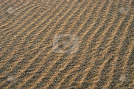 Sand stock photo, Desert sand detail by Rui Vale de Sousa