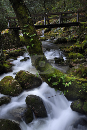 Waterfall stock photo, River waterfall in the portuguese national park by Rui Vale de Sousa