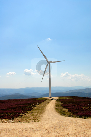Windmill stock photo, Photo of a road with wind turbine on the mountain by Rui Vale de Sousa