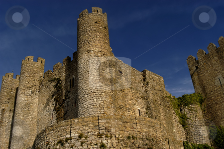 Castle stock photo, Ancient Obidos castle in the south of portugal by Rui Vale de Sousa