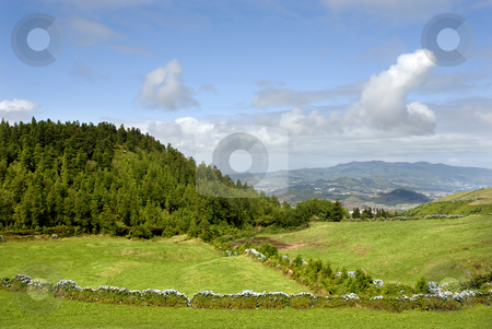 Scenic stock photo, Azores typical view at the island of Sao Miguel by Rui Vale de Sousa