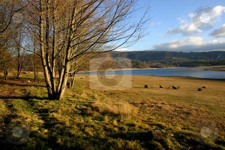 Landascape stock photo, Spanish landscape by Rui Vale de Sousa