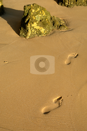 Footprints stock photo, Footprints on the wet sand at the beach by Rui Vale de Sousa