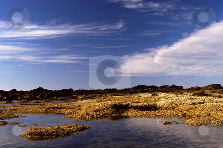 Ocean stock photo, Azores coastal view detail in s miguel island by Rui Vale de Sousa