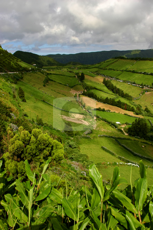 Green stock photo, Azores natural view by Rui Vale de Sousa