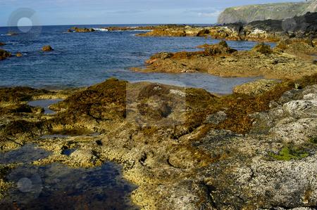 Azores coast stock photo, Azores coastal view by Rui Vale de Sousa