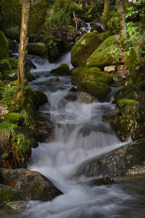 Water stock photo, River waterfall by Rui Vale de Sousa