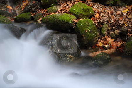 Running stock photo, Autumn river detail in a long exposure by Rui Vale de Sousa