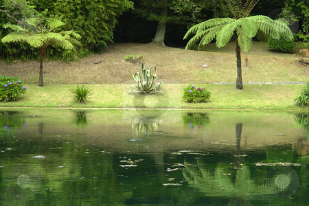 Mirror stock photo, Small lake in azores at the national park by Rui Vale de Sousa
