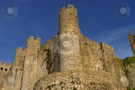Castle stock photo, Ancient portuguese castle at Obidos old town by Rui Vale de Sousa
