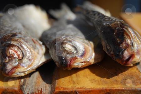 Three dried fishes stock photo, Close-up three dried fishes by Leyla Akhundova